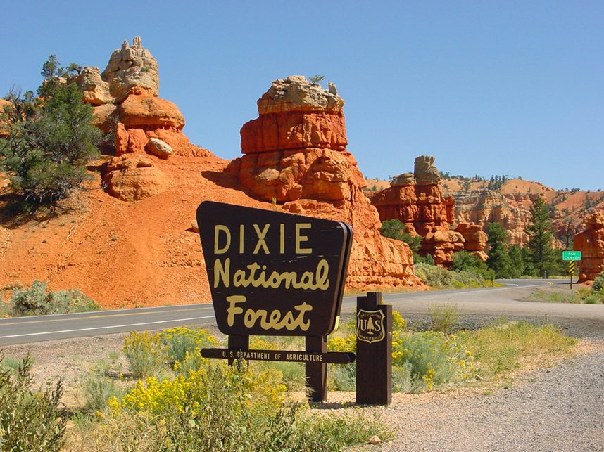 Dixie National Forest Near Bryce Valley Lodging