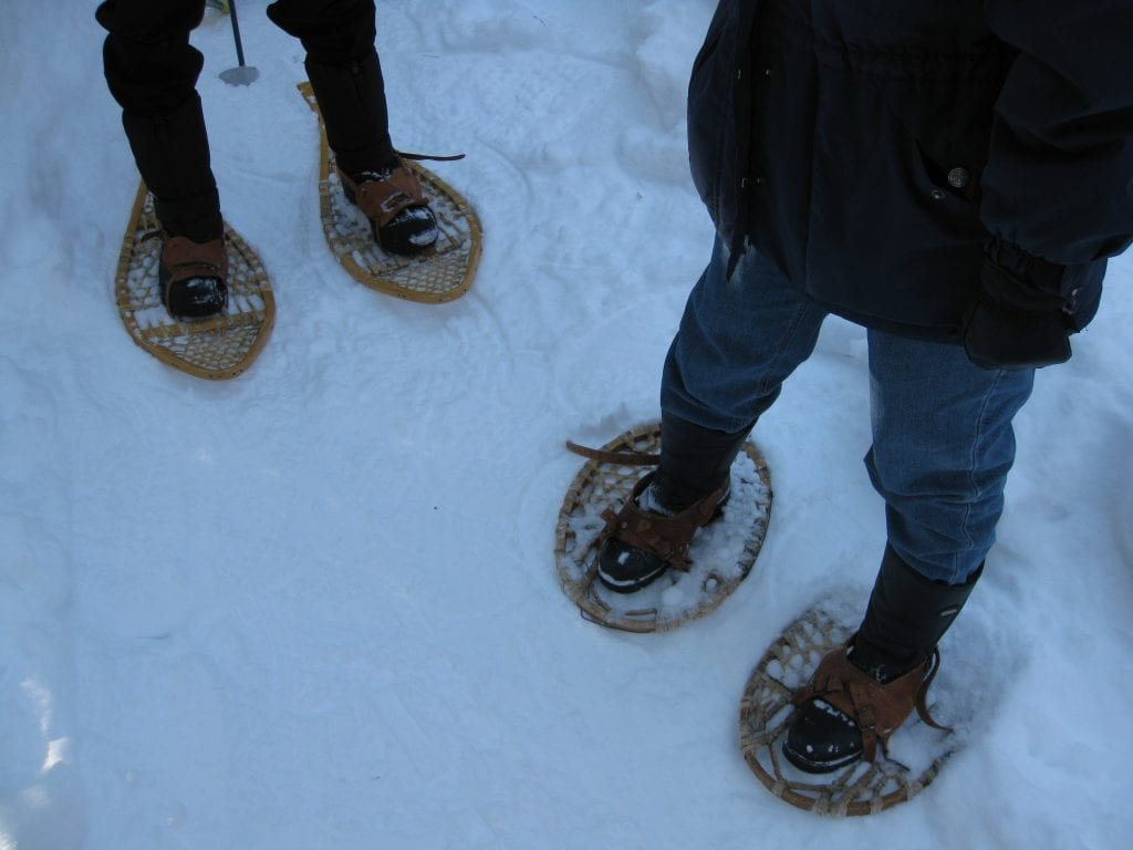 Snowshoes in winter