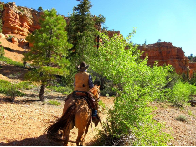 Horseback Riding Inside the Red Canyon